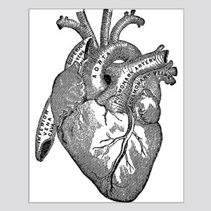 Anatomical Heart - Black Posters