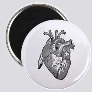 Anatomical Heart - Black Magnets