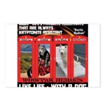 Hectic Hudson - Live Life With A Dog Postcards (Pa