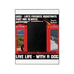 Hectic Hudson - Live Life With A Dog Picture Frame