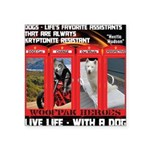 Hectic Hudson - Live Life With A Dog Sticker