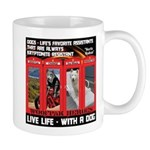 Hectic Hudson - Live Life With A Dog Mugs
