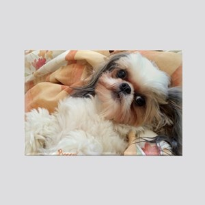 BonnyTheShihTzu_Snuggles Magnets