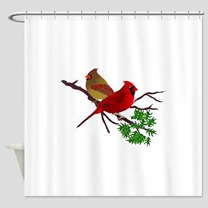 Cardinal Couple on a Branch Shower Curtain