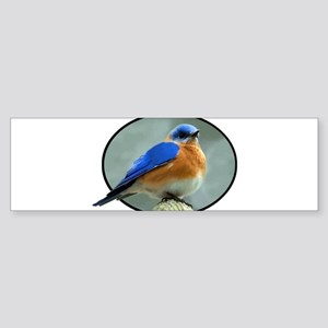 Bluebird in Oval Frame Bumper Sticker