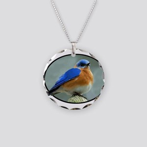 Bluebird in Oval Frame Necklace Circle Charm