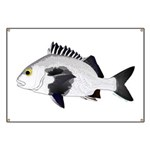Black Margate fish Banner