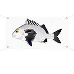 Black Margate fish Banner
