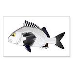 Black Margate fish Sticker