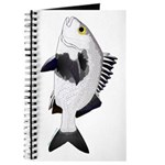 Black Margate fish Journal
