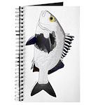 Black Margate fish Journal