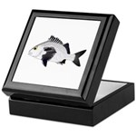 Black Margate fish Keepsake Box