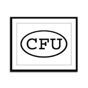 CFU Oval Framed Panel Print