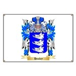 Healey Banner
