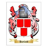 Hayland Small Poster