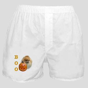 Pomeranian Boo Boxer Shorts