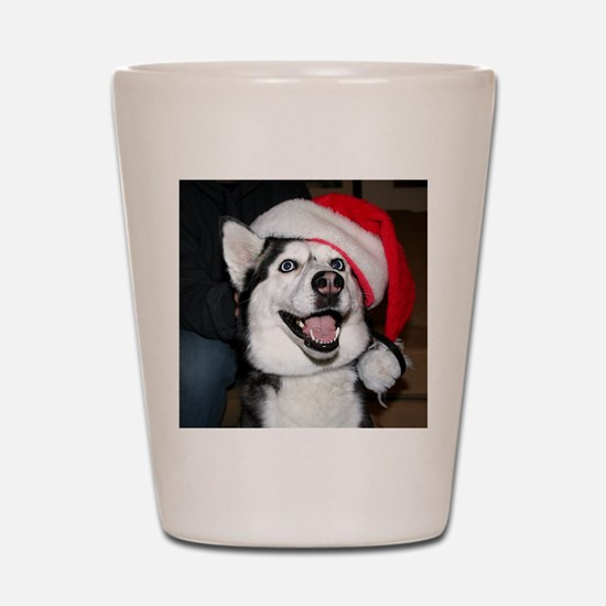 Christmas Husky Shot Glass