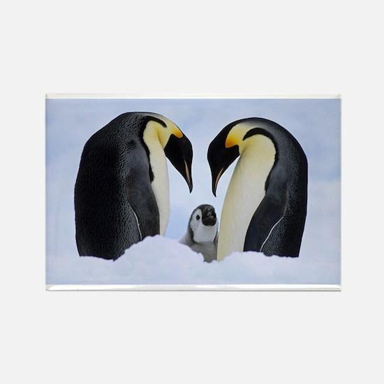 emperor penguins Magnets