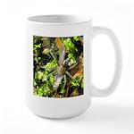 6 Spotted Fishing Spider v Mosquitofish Mugs