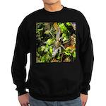 6 Spotted Fishing Spider v Mosquitofish Sweatshirt