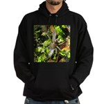 6 Spotted Fishing Spider v Mosquitofish Hoodie