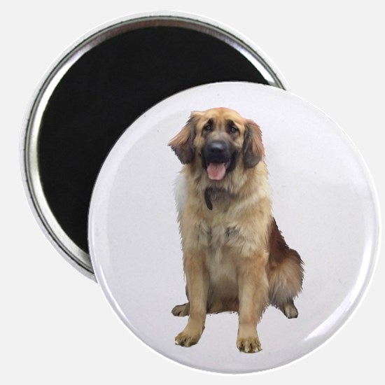 Great Pyrenees (ld) Magnet Magnets