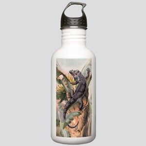 Vintage Reptile, Iguan Stainless Water Bottle 1.0L