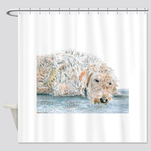 Sleepy Labradoodle Shower Curtain