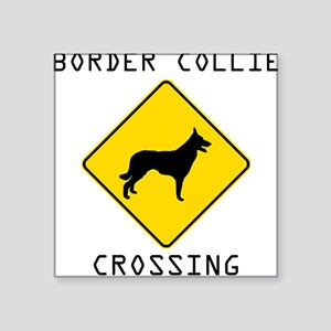 Border Collie Crossing Sticker