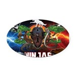Natures Ninjas Fire & Ice Oval Car Magnet