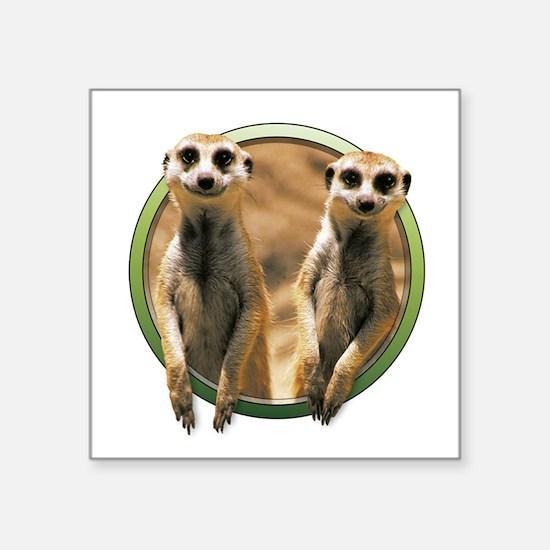 Meerkats Sticker