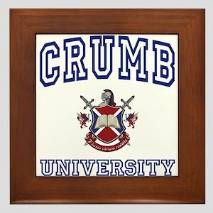 CRUMB University Framed Tile