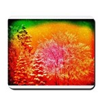 winterdream Mousepad
