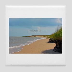 Woodland Beach - Delaware. Tile Coaster