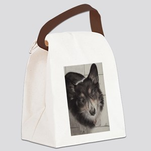 BooBoo Canvas Lunch Bag