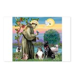 StFrancis-Lab & Sheltie Postcards (Package of 8)