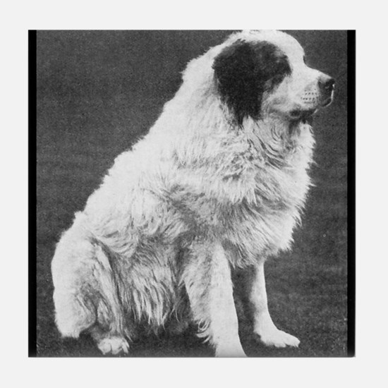 Tile Coaster - Great Pyrenees