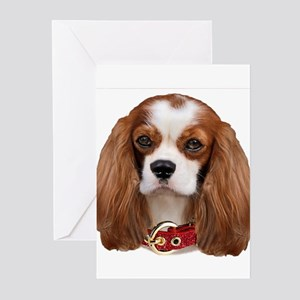 Cavalier King Charles Po Greeting Cards (Pk of 10)