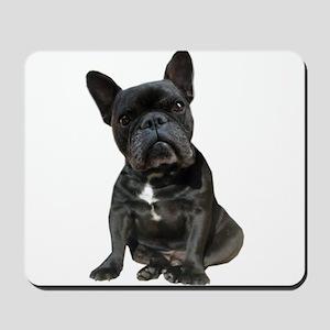 French Bulldog Puppy Portrait Mousepad