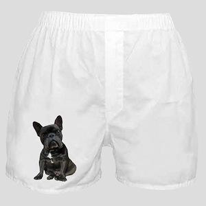 French Bulldog Puppy Portrait Boxer Shorts