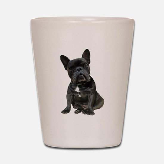 French Bulldog Puppy Portrait Shot Glass