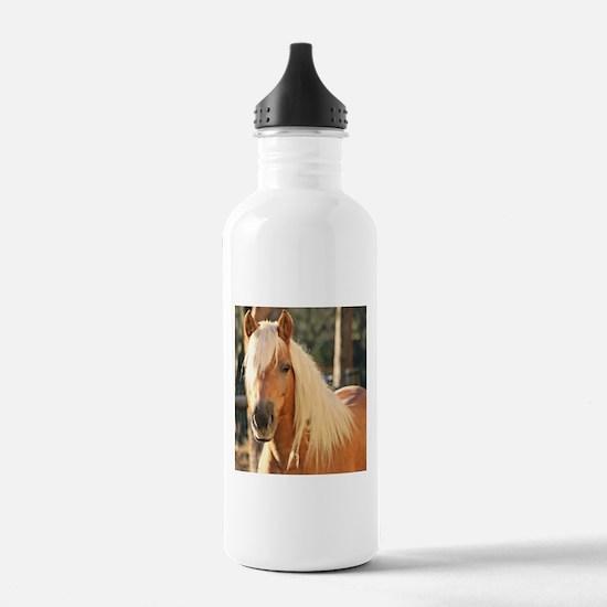 Cute Haflinger Water Bottle