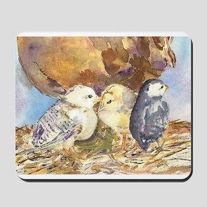 Three little chicks Mousepad