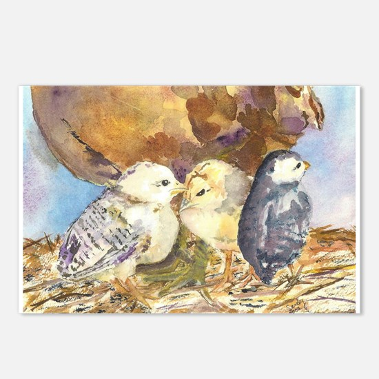 Three little chicks Postcards (Package of 8)