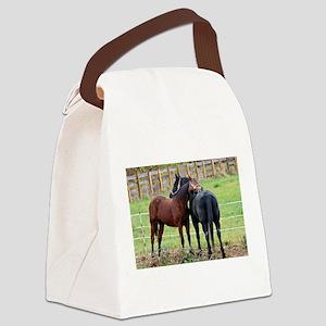 Snuggling Morgan Horses Canvas Lunch Bag