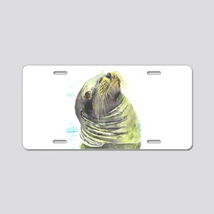 Galapagos Sea Lion Aluminum License Plate