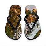 Taneycomo Sculpin in thin water Flip Flops