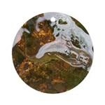 Taneycomo Sculpin in thin water Ornament (Round)