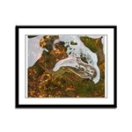 Taneycomo Sculpin in thin water Framed Panel Print