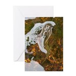 Taneycomo Sculpin in thin water Greeting Cards